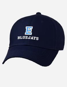 79e860bfe Elmhurst College fan gear!