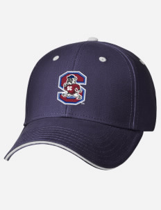 ce71d73514b4c South Carolina State University fan gear!