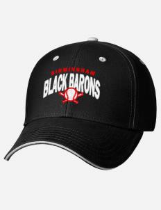 40245e88e1f Birmingham Black Barons fan gear!