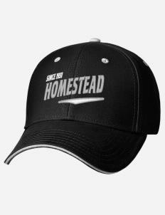 Homestead Grays fan gear! 9aa6ce707e