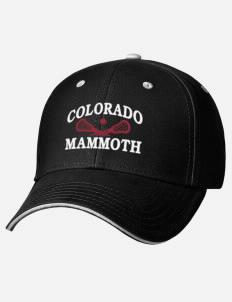 Colorado Mammoth fan gear! b24fff79681