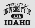 730e2e030 University of Idaho Vandals JERZEES Men's NuBlend® 8oz Colorblock Raglan  Hooded Sweatshirt