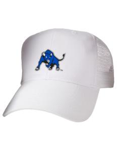 University at Buffalo Bulls Hats - All Hats 22de726d346c