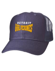 Detroit Wolverines Baseball  All Hats. Detroit e6fa61f3ba5