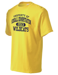 Kendall Demonstration Elementary School Wildcats Men's Essential T-Shirt