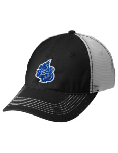 New Age Academy Learning Institute Dragons Embroidered Mesh Back Cap