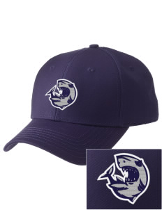Puget Sound Adventist Academy Sharks  Embroidered New Era Adjustable Structured Cap