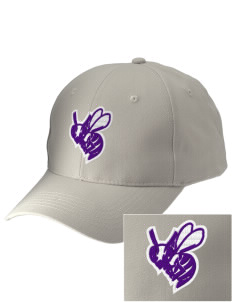 Deep Creek Central Elementary School Hornets Embroidered Low-Profile Cap