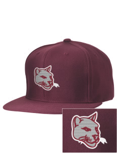 Coronado Continuation High School Cougars Embroidered D-Series Cap