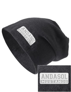 Andasol Elementary School Mustangs Embroidered Slouch Beanie