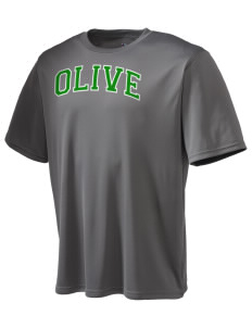 Olive Elementary School Falcons Champion Men's Wicking T-Shirt