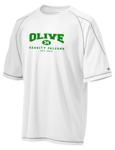Olive Elementary School Falcons Champion Men's 4.1 oz Double Dry Odor Resistance T-Shirt