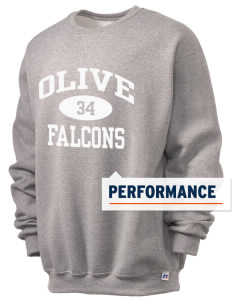 Olive Elementary School Falcons  Russell Men's Dri-Power Crewneck Sweatshirt