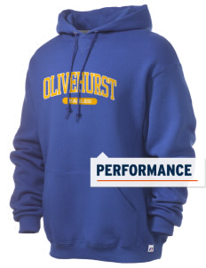 Olivehurst Elementary School Eagles Russell Men's Dri-Power Hooded Sweatshirt