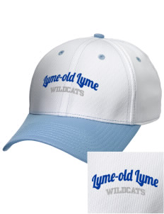 Lyme-Old Lyme Middle School Wildcats Embroidered New Era Snapback Performance Mesh Contrast Bill Cap