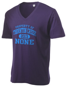 Thornton Creek None Alternative Men's 3.7 oz Basic V-Neck T-Shirt
