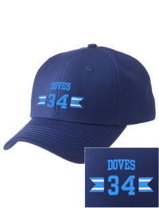 Alternate Learning School Doves  Embroidered New Era Adjustable Structured Cap