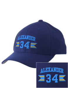 Alexander Elementary School Wildcats Embroidered Pro Model Fitted Cap