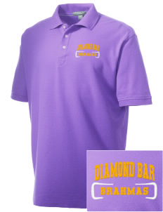 Diamond Bar High School Brahmas Embroidered Men's Performance Plus Pique Polo