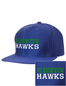Meadowview Elementary School Hawks Embroidered D-Series Cap