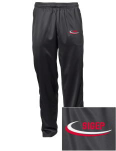 Sigma Phi Epsilon Embroidered Men's Tricot Track Pants