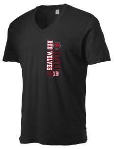 Arkansas State University Red Wolves Alternative Men's 3.7 oz Basic V-Neck T-Shirt