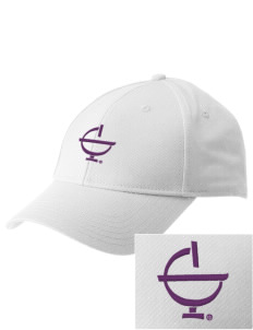 Excelsior College Start to Finish  Embroidered New Era Adjustable Structured Cap