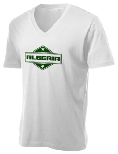 Algeria Alternative Men's 3.7 oz Basic V-Neck T-Shirt