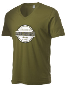 Bering Land Bridge National Preserve Alternative Men's 3.7 oz Basic V-Neck T-Shirt