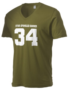 Star-Spangled Banner National Scenic Trail Alternative Men's 3.7 oz Basic V-Neck T-Shirt