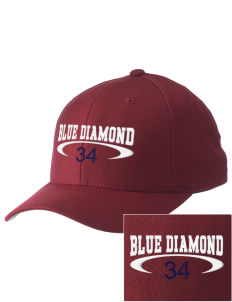Blue Diamond Embroidered Pro Model Fitted Cap