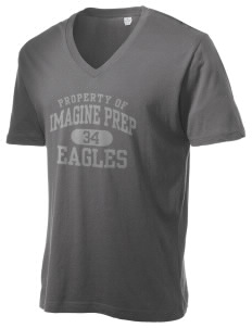 Imagine Prep at Coolidge Eagles Alternative Men's 3.7 oz Basic V-Neck T-Shirt
