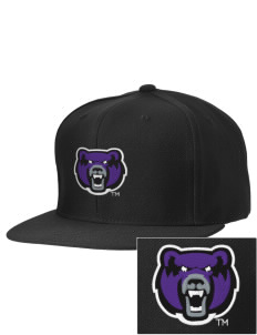 University of Central Arkansas Bears Embroidered D-Series Cap