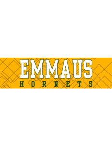 "Emmaus High School Hornets Bumper Sticker 11"" x 3"""