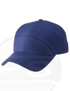 Cumberland County Technical Education Center Tigers  Embroidered New Era Adjustable Structured Cap