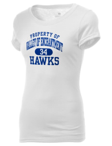 Valley Of Enchantment Elementary School Hawks Holloway Women's Groove T-Shirt
