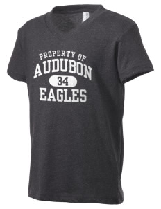 Audubon Junior High School Eagles Kid's V-Neck Jersey T-Shirt