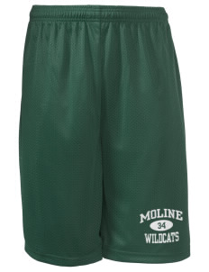 "Moline Elementary School Wildcats Long Mesh Shorts, 9"" Inseam"