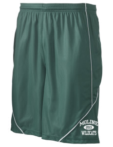 "Moline Elementary School Wildcats Men's Pocicharge Mesh Reversible Short, 9"" Inseam"