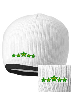 Gold Hill Elementary School Stars Embroidered Champion Striped Knit Beanie