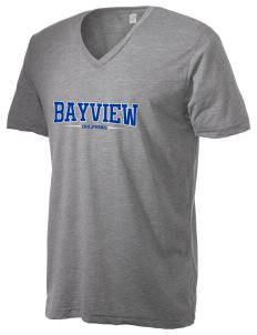 Bayview Elementary School Dolphins Alternative Men's 3.7 oz Basic V-Neck T-Shirt