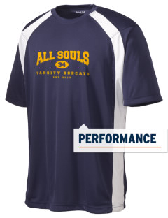 All Souls School Bobcats Men's Dry Zone Colorblock T-Shirt