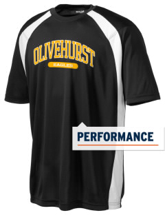 Olivehurst Elementary School Eagles Men's Dry Zone Colorblock T-Shirt
