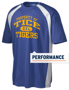 Tice Elementary School Tigers Men's Dry Zone Colorblock T-Shirt