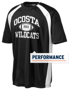 Ocosta Elementary School Wildcats Men's Dry Zone Colorblock T-Shirt