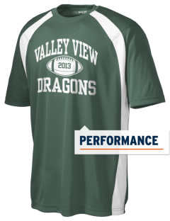 Valley View Elementary School Dragons Men's Dry Zone Colorblock T-Shirt