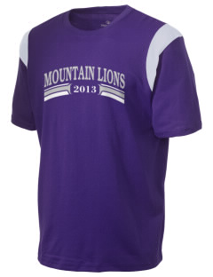 Icicle River Middle School Mountain Lions Holloway Men's Rush T-Shirt