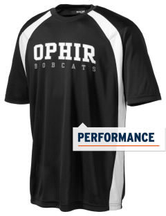 Ophir Elementary School Bobcats Men's Dry Zone Colorblock T-Shirt