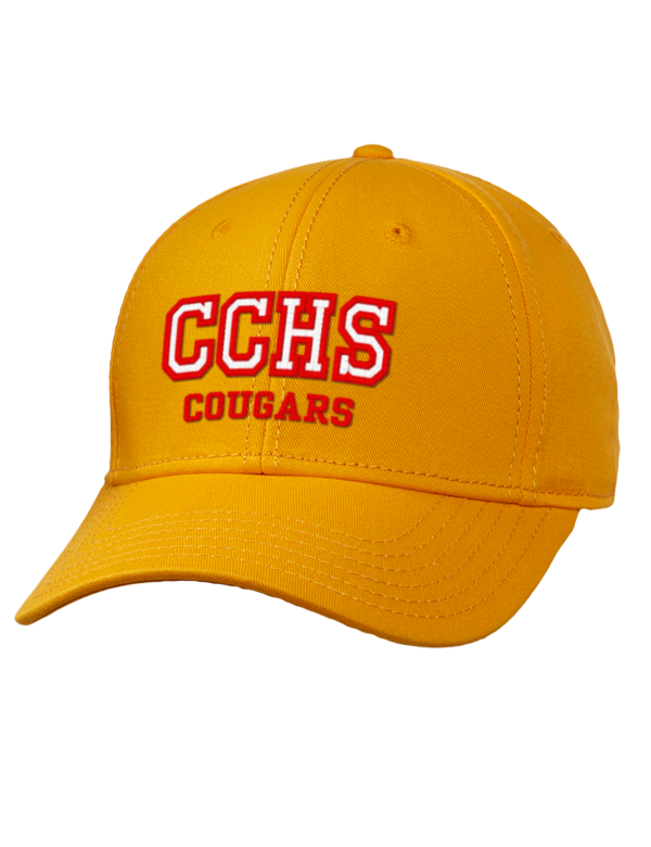 coconut creek cougars personals Shop for a wide selection of custom coconut creek high school cougars men's short sleeve t shirts from prep sportswear design your own short sleeve t-shirts in an unlimited combination of.