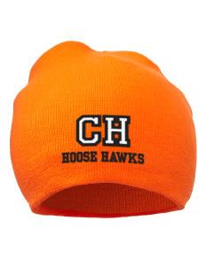loadanim Colene Hoose Elementary School Hoose Hawks Embroidered Acrylic  Beanie